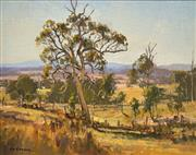 Sale 8675 - Lot 570 - Les Graham (1942 - ) - Sunlit Pasture Euroka near Kempsey 28.5 x 36cm