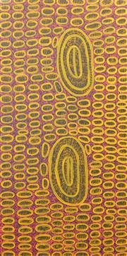 Sale 8443A - Lot 5062 - Ngoia Pollard Napaltjarri (c1940 - ) - Fathers Country 141 x 70cm (framed & ready to hang)