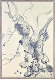 Sale 8339A - Lot 592 - Anne Hall (1945 - ) - Knotted Gum Tree, 1968 101 x 69.5cm (sheet size)