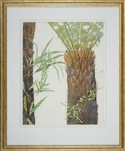 Sale 8506 - Lot 2023 - Carol Morris - Soft Tree Fern, Pyrrosia Rupestris, 1996 70 x 54cm