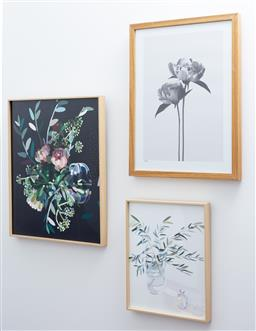 Sale 9150H - Lot 52 - A group of three box framed prints with floral designs, largest frame size 51.5x 41cm