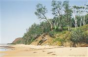 Sale 8519 - Lot 594 - David Rose (1936 - 2006) - The Bush at Bateau Bay, 1991 52 x 78cm
