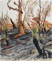 Sale 8510 - Lot 508 - David Rose (1936 - 2006) - After Bushfire, Somersby 1991 66 x 56cm
