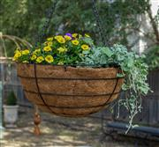 Sale 8745A - Lot 81 - A pair of planted hanging baskets