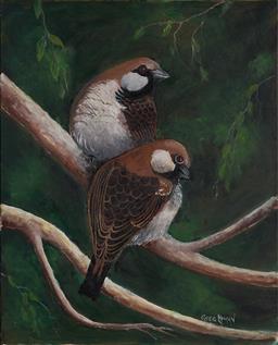 Sale 9099A - Lot 5075 - Greg Lipman (1938 - ) - House Sparrows 76 x 61 cm