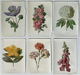Sale 9142A - Lot 5073 - Vintage Floral Prints (6): book prints, 18.5 x 12.5cm, each -