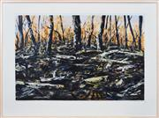 Sale 8358 - Lot 557 - Jan Senbergs (1939 - ) - Burnt Bush, 1996 71 x 106cm