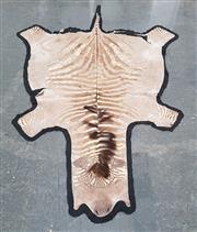 Sale 8962 - Lot 1060 - Zebra Pelt Mounted on Felt, Damaged (260 x 117cm)