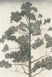 Sale 8794A - Lot 5007 - Peter Hickey (1943 - ) - Eucalyptus Saligna, 1978 73.5 x 48.5cm