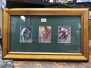 Sale 8863S - Lot 42 - Test Player Cards. Three player cards - signed by Arthur Morris, Neil Harvey and Alan Davidson, framed.