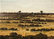 Sale 8738A - Lot 5090 - Michael Taylor (1950 - ) - Cattles Grazing Near Hawker, Flinders Ranges 44 x 59.5cm
