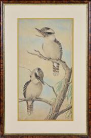 Sale 8363 - Lot 568 - Neville Cayley (1853 - 1903) - Kookaburras, 1896 52.8 x 28cm