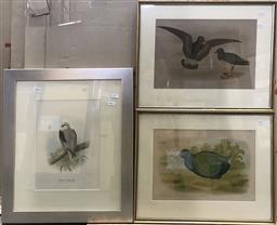 Sale 9106 - Lot 2059 - Group of (3) Vintage Bird Lithographs incl. Bronowski (2) & Henrik Gronvold